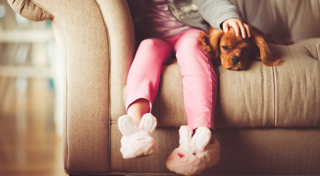 Child and dog sitting on a couch